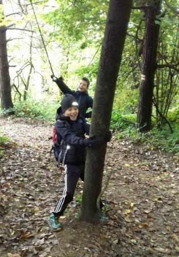Na stromym błotnistym stoku drzewa często przychodzą nam z pomocą.