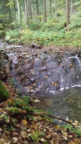 Pomnik przyrody nieożywionej – próg skalny z wodospadem na Potoku Olchowatym.
